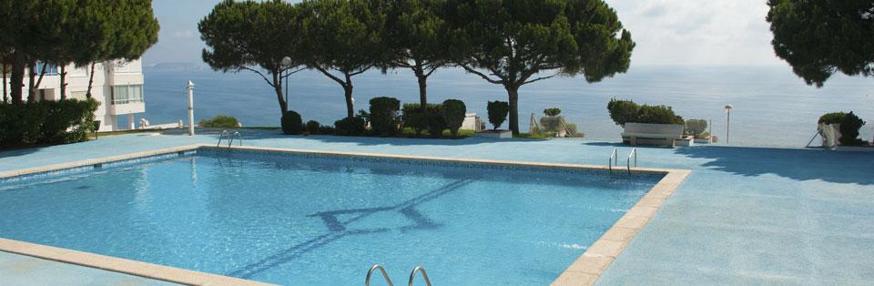 Maintenance espace vert piscine cl en main majorque for Maintenance piscine