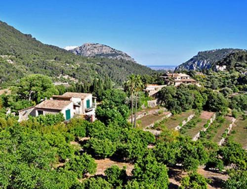 Les charmes de Majorque, hors saison